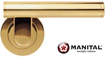 Esprit Brass Door Lever