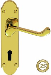 Oakley PVD Brass Door Handles